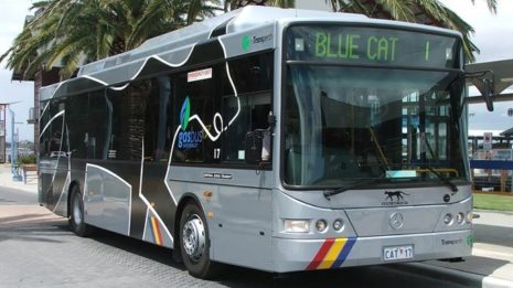 Transdev Australasia cat bus Perth beachside